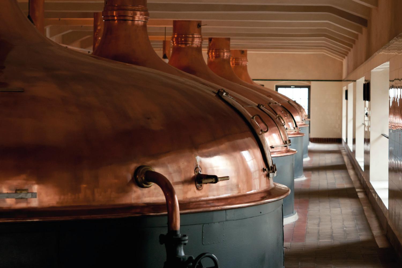 Cocimiento de cerveza artesanal. Cerveza RIOS